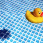 Homepage creative mm immagine - Paperelle da bagno ...
