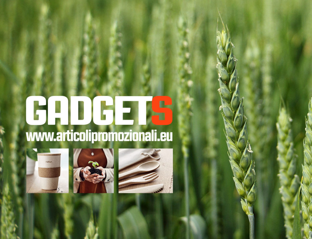 CATALOGO GADGET ECO GREEN